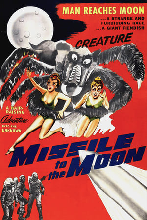 Flashington | Missile to the Moon