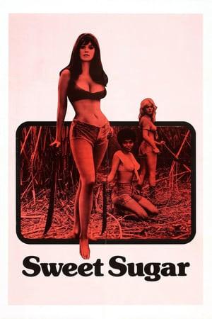 Sweet Sugar Poster