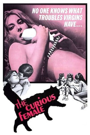Flashington | The Curious Female