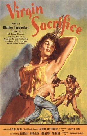 Flashington | Virgin Sacrifice