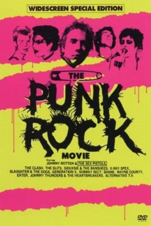 Flashington | The Punk Rock Movie
