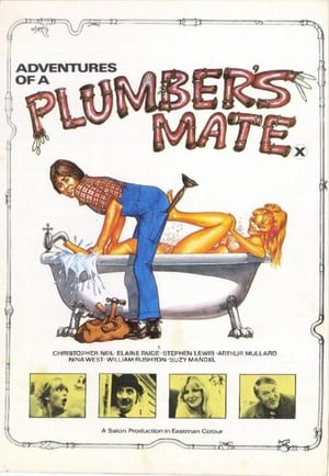 Flashington | Adventures of a Plumber's Mate