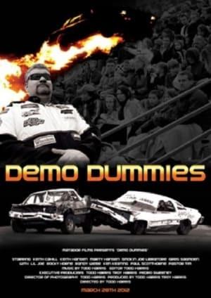Demo Dummies Poster